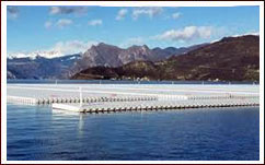 Project of Christo's Floating Piers at Lake Iso